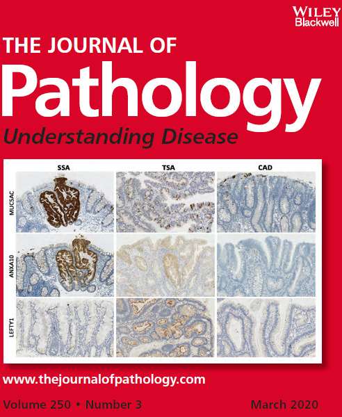 Publications récentes associant la plateforme (couverture de J. Pathology issue de l'article décrivant l'analyse par 3P5 de 61 coupes FFPE https://doi.org/10.1002/path.5366)